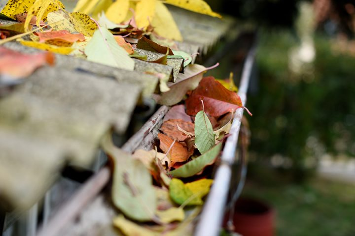 Gutter cleaning, to remove blockages caused by autumn leaves