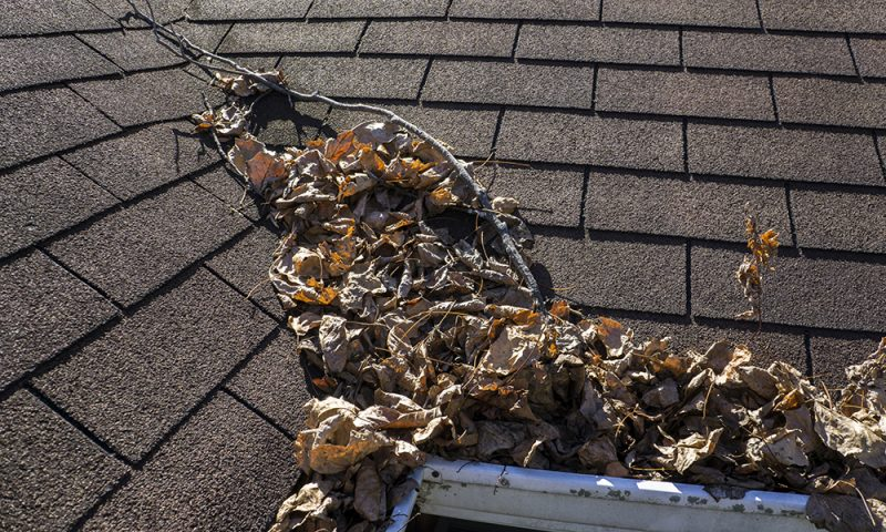 Gutters blocked with leaves and other debris, in need of commercial gutter cleaning