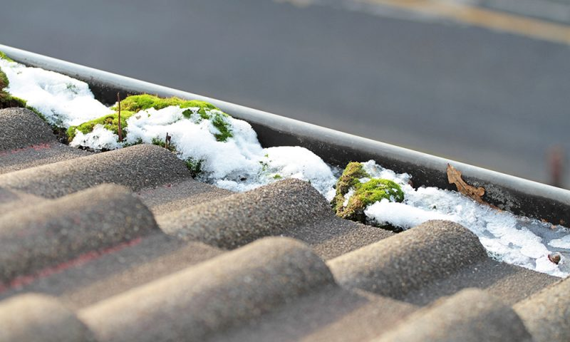 Gutter system clogged with moss and snow