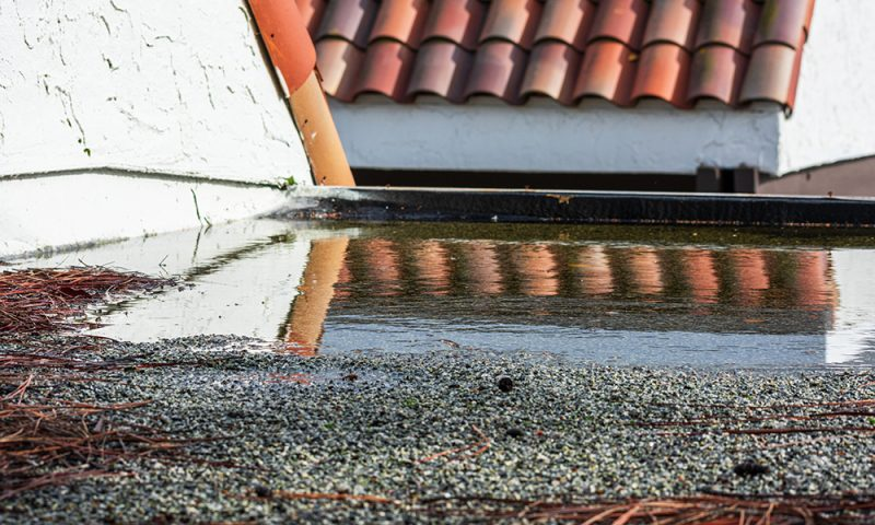 Snow, Ice & Standing Water: The three enemies of flat roofed premises